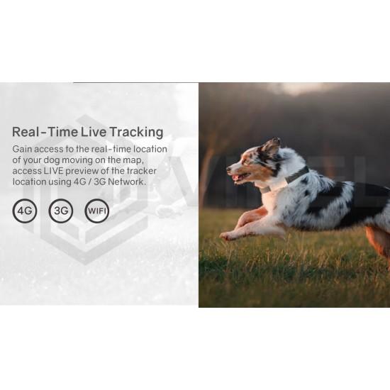 4G Outdoor Pet Dog GPS Tracker